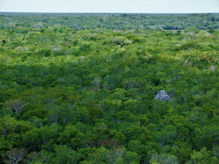 mayan-pyramids-ixmoja-coba-quintana-roo-mexico