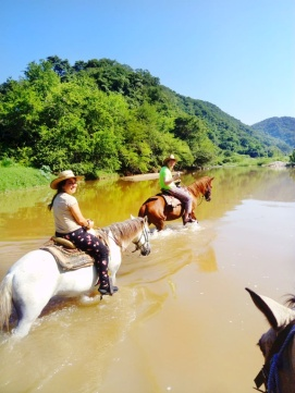 horse-back-riding-in-the-jungle-in-mexico-adventure